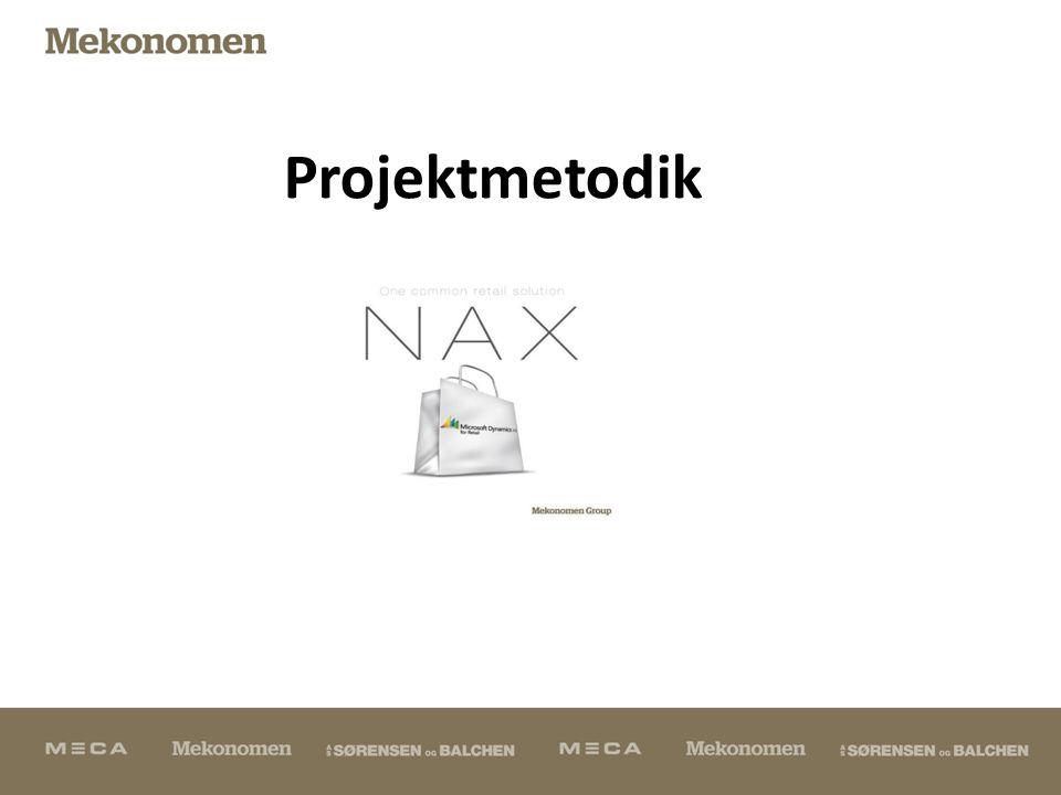 Projektmetodik