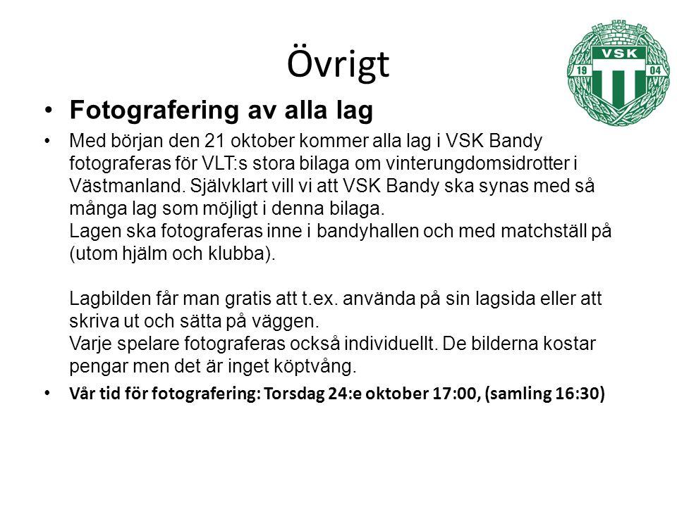 Övrigt Fotografering av alla lag Med början den 21 oktober kommer alla lag i VSK Bandy fotograferas för VLT:s stora bilaga om vinterungdomsidrotter i Västmanland.