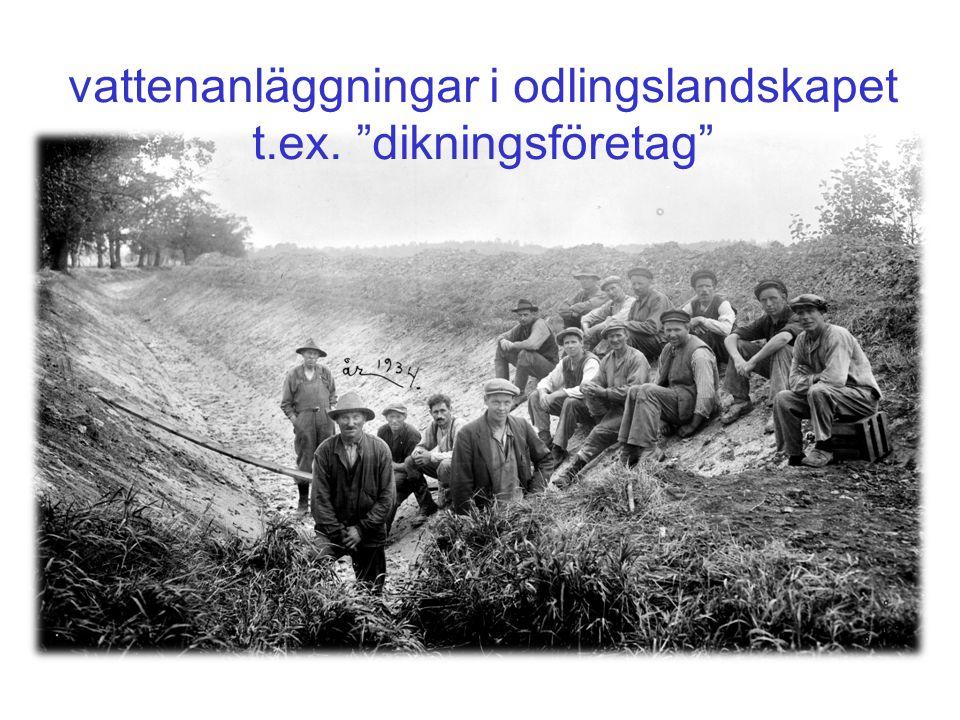 vattenanläggningar i odlingslandskapet t.ex. dikningsföretag