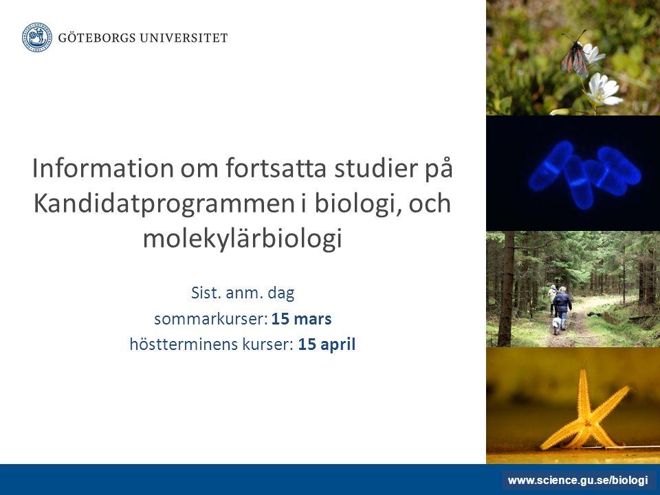 www.gu.se UTBILDNINGARNAS INNEHÅLL Termin 1 och 2 Termin 3 Termin 5 och 6 BIOLOGI/MOLEKYLÄRBIOLOGI BIO900-BIO915 BASKURSER I BIOLOGI/MOLEKYLÄRBIOLOGI BIO920 Biodiversitet och systematik 15 hp NTH001 Teoretiska och historiska perspektiv på naturvetenskap 7,5 hp BIO172 Biostatistik och experimentdesign, enfaktorsanalys 7,5 hp FÖRDJUPNINGSKURSER + EXAMENSKURS www.biology.gu.se HUR ANMÄLER JAG MIG I FORTSÄTTNINGEN.