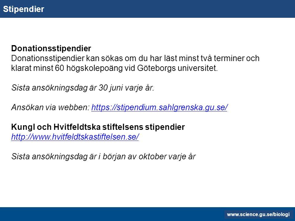 www.gu.se www.biology.gu.se Jobb- Platsannonser Information på biologis hemsida över möjliga arbetsgivare efter att utbildningen är slutförd.