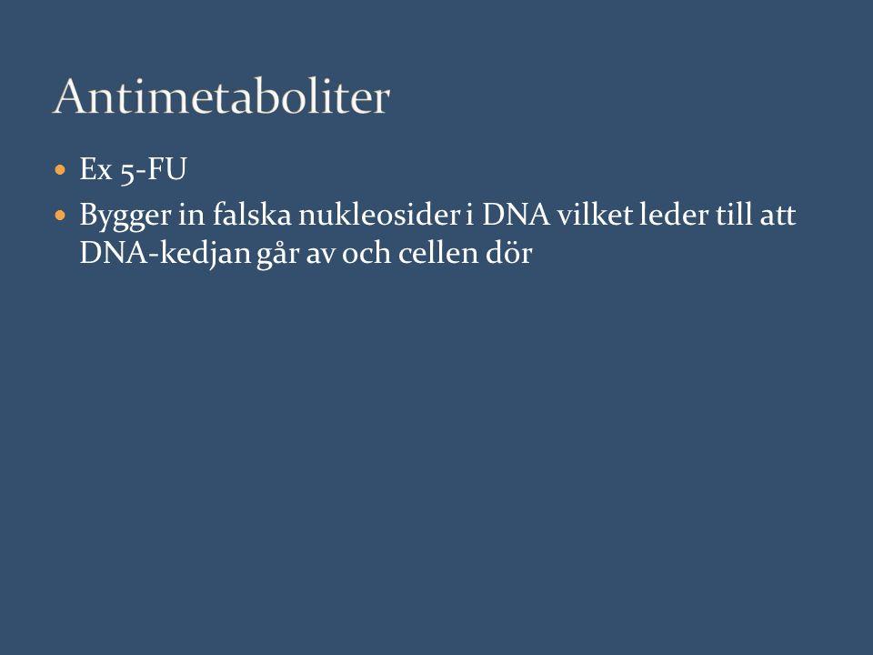 Ex 5-FU Bygger in falska nukleosider i DNA vilket leder till att DNA-kedjan går av och cellen dör