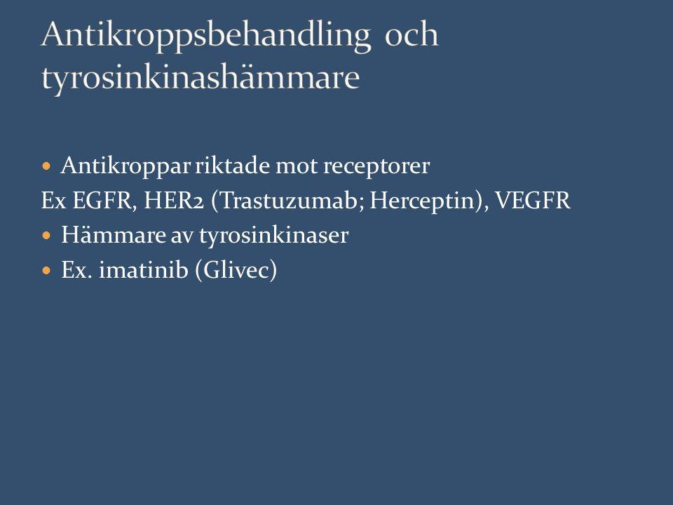 Antikroppar riktade mot receptorer Ex EGFR, HER2 (Trastuzumab; Herceptin), VEGFR Hämmare av tyrosinkinaser Ex.