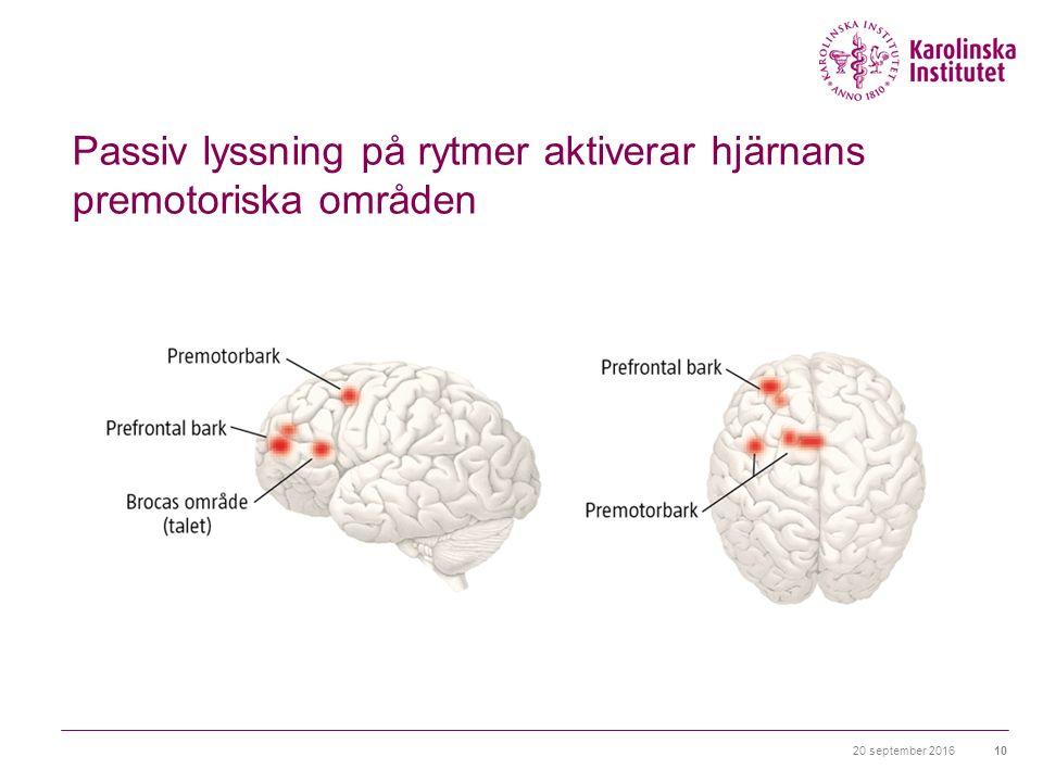 20 september 201610 Passiv lyssning på rytmer aktiverar hjärnans premotoriska områden