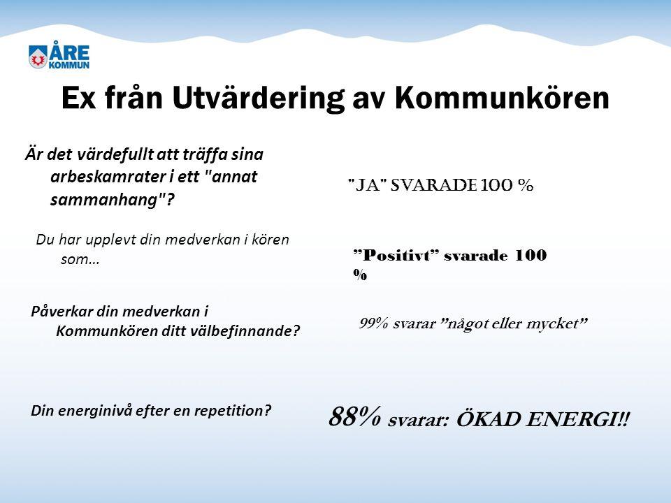 Ex från Utvärdering av Kommunkören Är det värdefullt att träffa sina arbeskamrater i ett annat sammanhang .