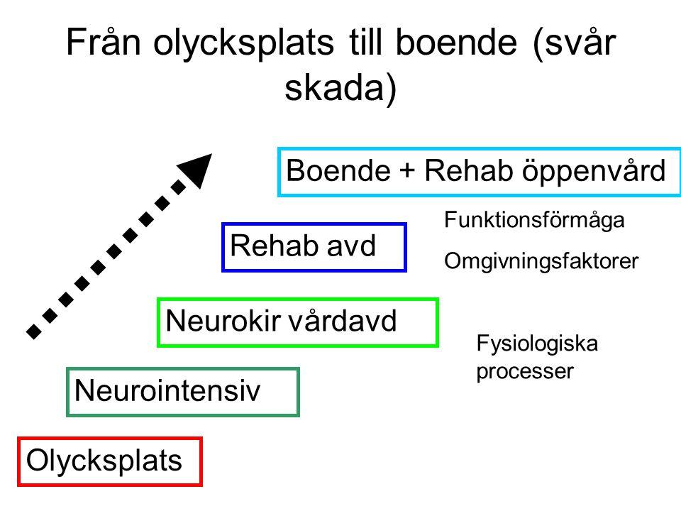 Från olycksplats till boende (svår skada) Olycksplats Boende + Rehab öppenvård Rehab avd Neurokir vårdavd Neurointensiv Fysiologiska processer Funktionsförmåga Omgivningsfaktorer