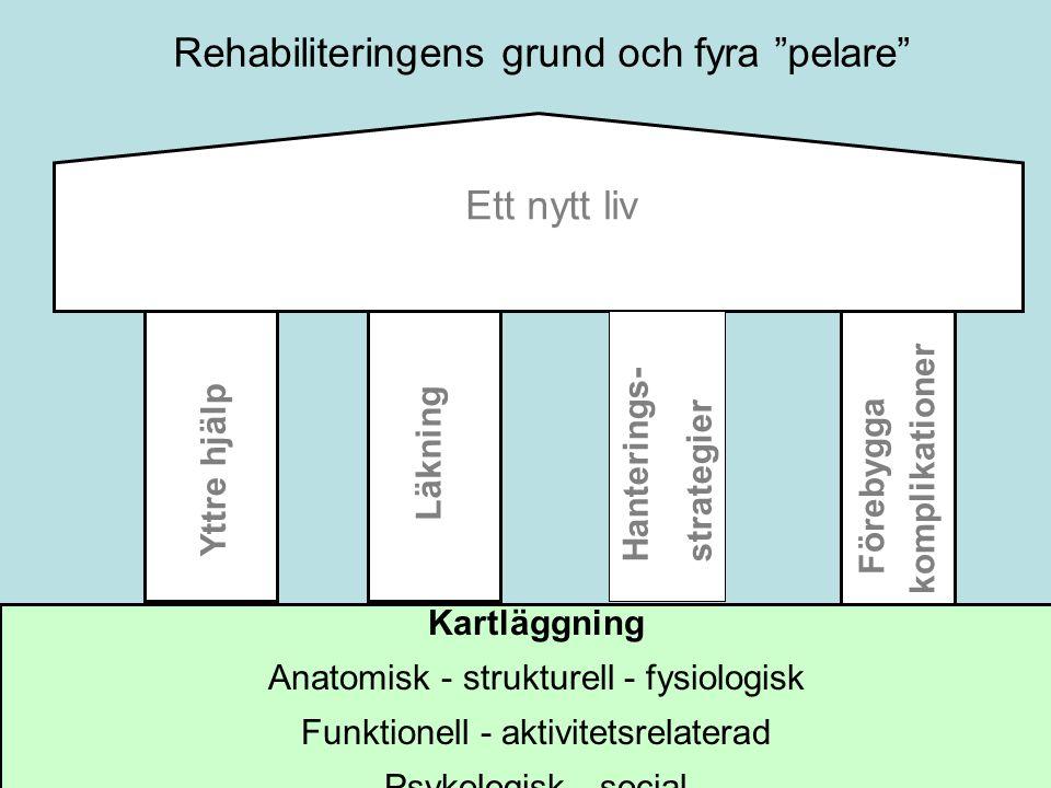 Ett nytt liv Läkning Hanterings- strategier Yttre hjälp Förebygga komplikationer Rehabiliteringens grund och fyra pelare Kartläggning Anatomisk - strukturell - fysiologisk Funktionell - aktivitetsrelaterad Psykologisk - social
