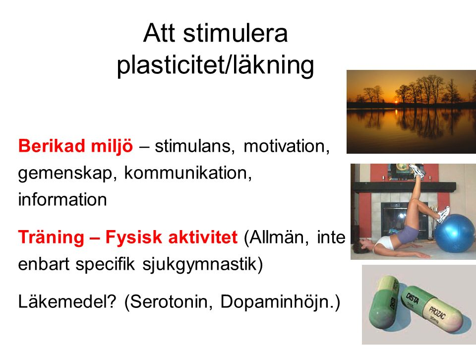 Att stimulera plasticitet/läkning Berikad miljö – stimulans, motivation, gemenskap, kommunikation, information Träning – Fysisk aktivitet (Allmän, inte enbart specifik sjukgymnastik) Läkemedel.