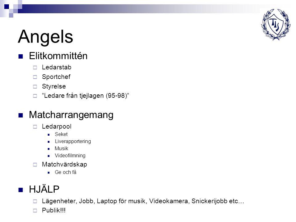 "Angels Elitkommittén  Ledarstab  Sportchef  Styrelse  ""Ledare från tjejlagen (95-98)"" Matcharrangemang  Ledarpool Seket Liverapportering Musik Vi"