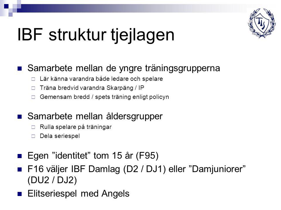 IBF struktur tjejlagen Samarbete mellan de yngre träningsgrupperna  Lär känna varandra både ledare och spelare  Träna bredvid varandra Skarpäng / IP  Gemensam bredd / spets träning enligt policyn Samarbete mellan åldersgrupper  Rulla spelare på träningar  Dela seriespel Egen identitet tom 15 år (F95) F16 väljer IBF Damlag (D2 / DJ1) eller Damjuniorer (DU2 / DJ2) Elitseriespel med Angels