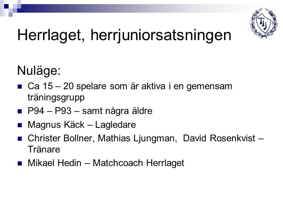Herrlaget, herrjuniorsatsningen Nuläge: Ca 15 – 20 spelare som är aktiva i en gemensam träningsgrupp P94 – P93 – samt några äldre Magnus Käck – Lagled