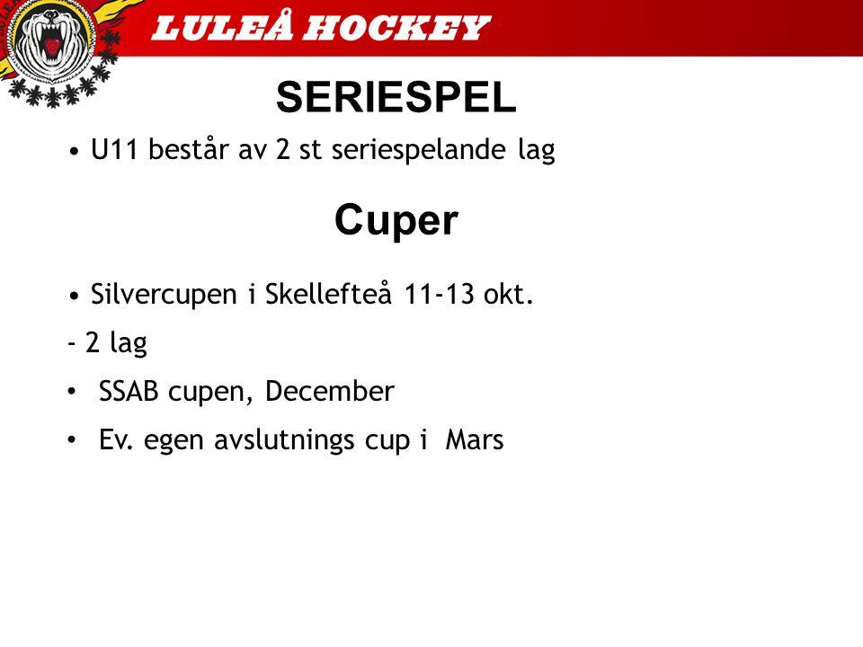 SERIESPEL U11 består av 2 st seriespelande lag Silvercupen i Skellefteå 11-13 okt.