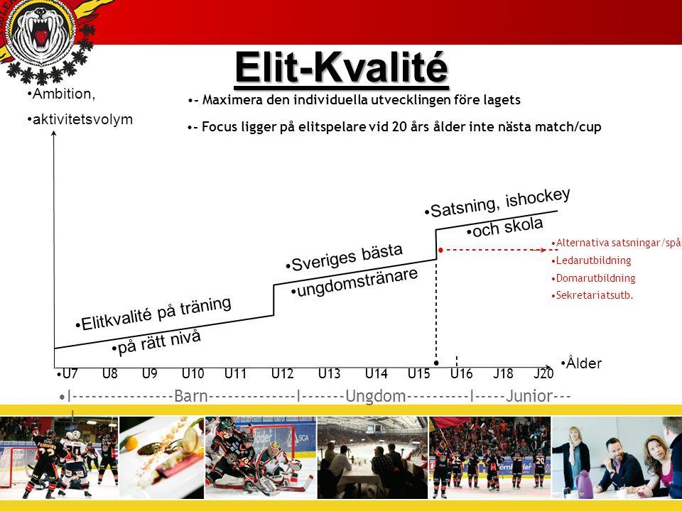 U7 U8 U9 U10 U11 U12 U13 U14 U15 U16 J18 J20 Elitkvalité på träning Sveriges bästa ungdomstränare Satsning, ishockey och skola --------------- -- ------------------ Alternativa satsningar/spår: Ledarutbildning Domarutbildning Sekretariatsutb.