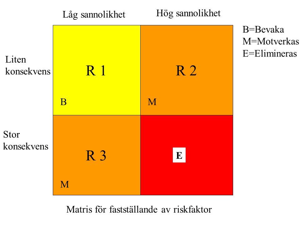 R 1R 2 R 3 B M M Låg sannolikhet Hög sannolikhet Liten konsekvens Stor konsekvens Matris för fastställande av riskfaktor B=Bevaka M=Motverkas E=Elimin