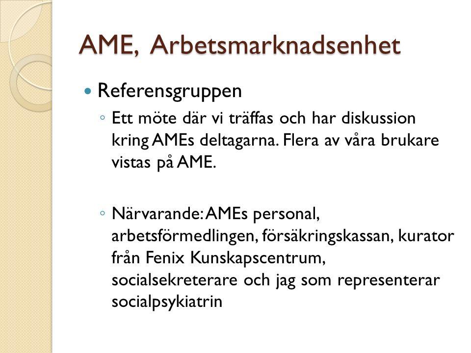 AME, Arbetsmarknadsenhet Referensgruppen ◦ Ett möte där vi träffas och har diskussion kring AMEs deltagarna.