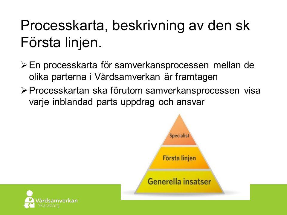 Skaraborgs Sjukhus Processkarta, beskrivning av den sk Första linjen.