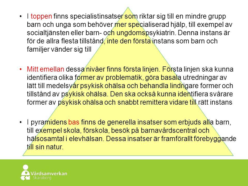 Skaraborgs Sjukhus I toppen finns specialistinsatser som riktar sig till en mindre grupp barn och unga som behöver mer specialiserad hjälp, till exempel av socialtjänsten eller barn- och ungdomspsykiatrin.