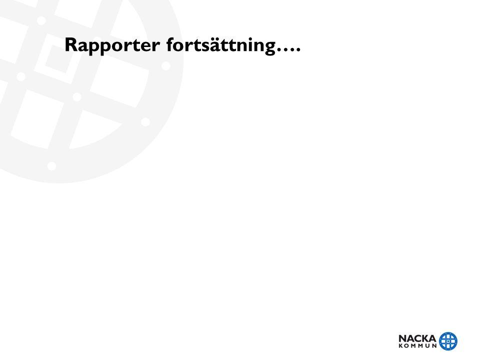 Rapporter fortsättning….