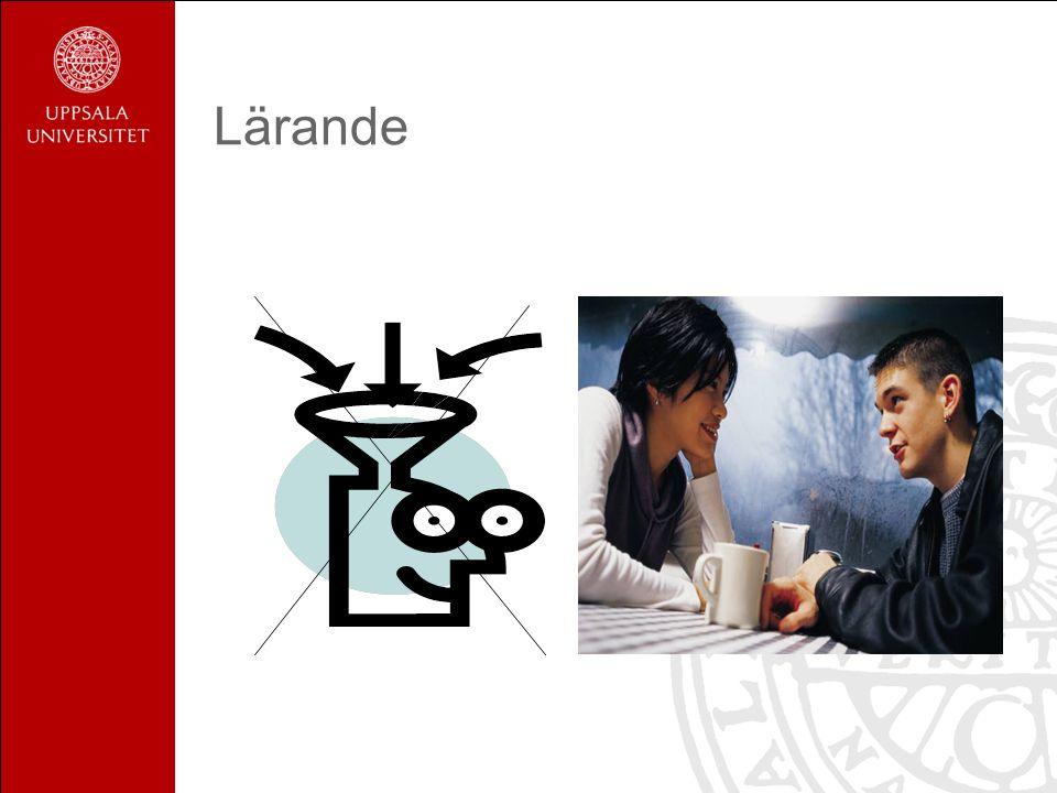 Iakttagelser och information bearbetas och sammanförs till ny kunskap specifik för den som lär.