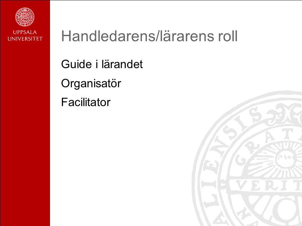 Handledarens/lärarens roll Guide i lärandet Organisatör Facilitator