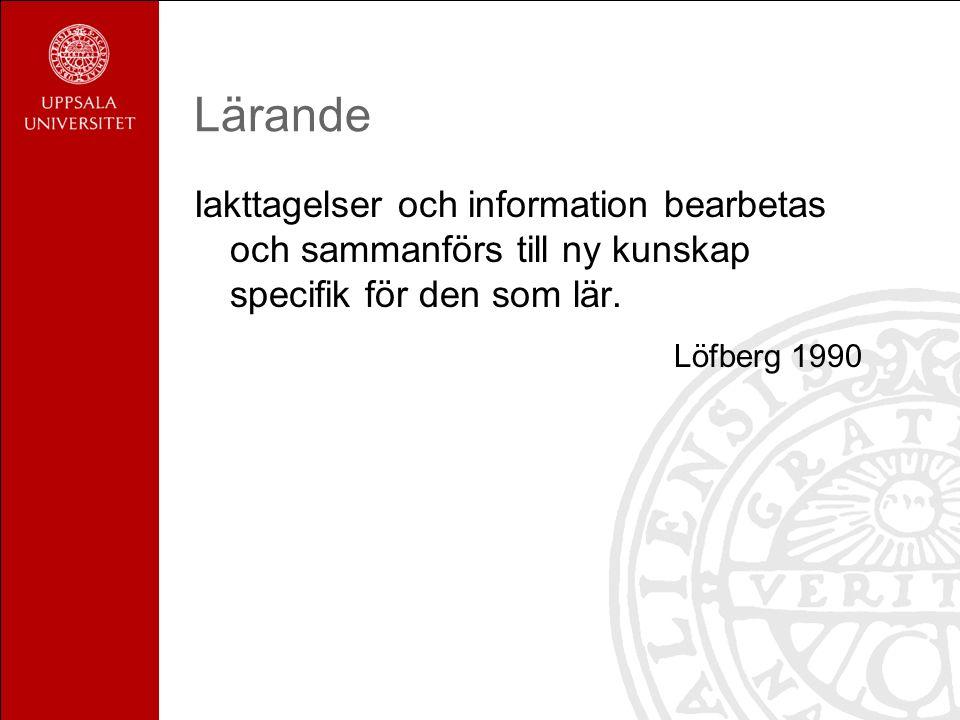 Urell & Sundbom Lärstil Lärstilar är det sätt på vilket man tar till sig bearbetar och lagrar information.