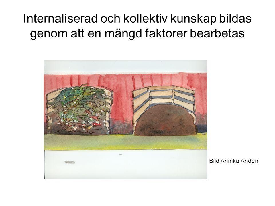 Internaliserad och kollektiv kunskap bildas genom att en mängd faktorer bearbetas Bild Annika Andén