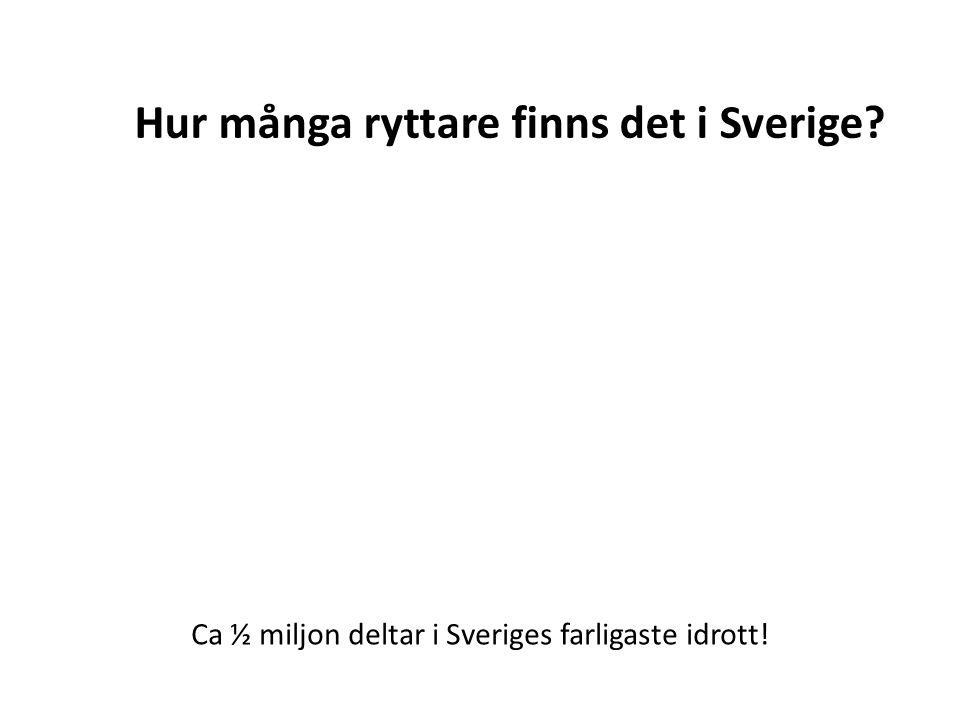 Hur många ryttare finns det i Sverige? Ca ½ miljon deltar i Sveriges farligaste idrott!