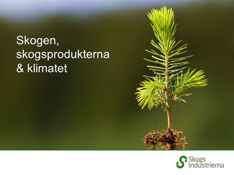 Skogens betydelse för koldioxidbalansen Växande skog binder koldioxid genom fotosyntesen Kolet från koldioxiden lagras i trädets alla delar Förädling av skogsråvaran kräver låg insats av energi Att ersätta mer energikrävande material med träbaserade produkter ger en bonuseffekt Träbaserade produkter återvinns och/eller återanvänds Uttjänta produkter förbränns och blir bioenergi eller komposteras Vid förbränning och kompostering avges koldioxiden till atmosfären