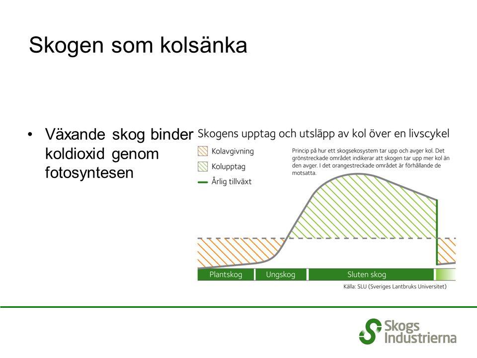 Utsläpp och upptag av koldioxid i Sverige Skillnaden mellan årlig tillväxt och avverkning innebär att den svenska skogen nettolagrar 20-35 Mton CO 2 per år.