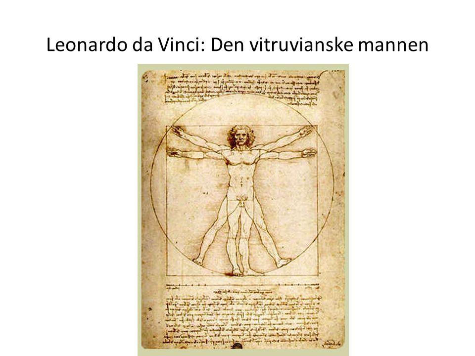 Leonardo da Vinci: Den vitruvianske mannen