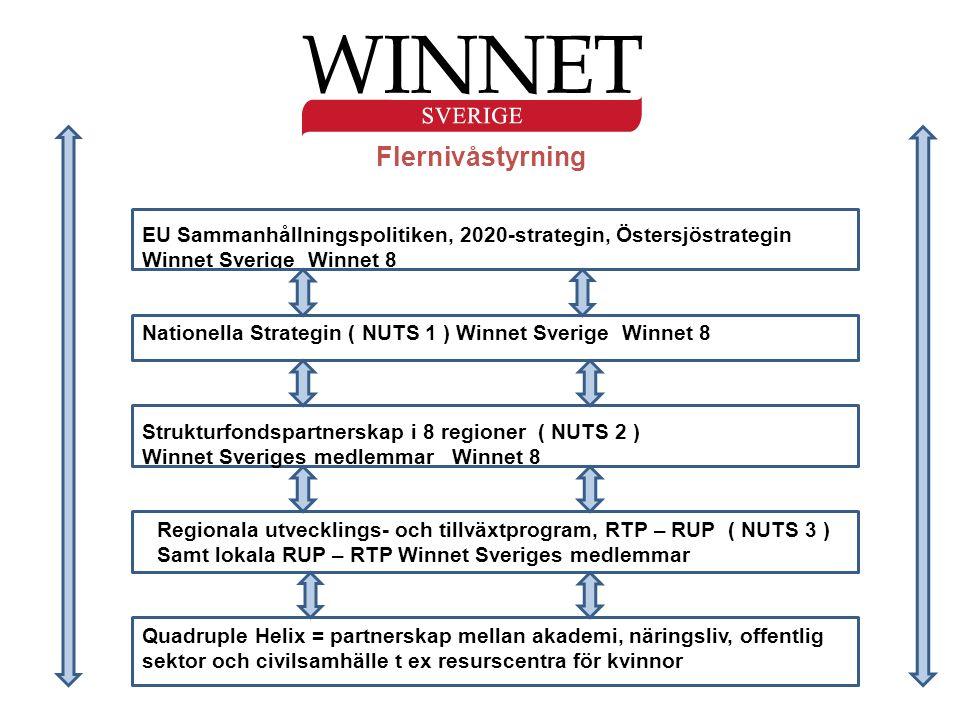 Flernivåstyrning EU Sammanhållningspolitiken, 2020-strategin, Östersjöstrategin Winnet Sverige Winnet 8 Nationella Strategin ( NUTS 1 ) Winnet Sverige Winnet 8 Strukturfondspartnerskap i 8 regioner ( NUTS 2 ) Winnet Sveriges medlemmar Winnet 8 Regionala utvecklings- och tillväxtprogram, RTP – RUP ( NUTS 3 ) Samt lokala RUP – RTP Winnet Sveriges medlemmar Quadruple Helix = partnerskap mellan akademi, näringsliv, offentlig sektor och civilsamhälle t ex resurscentra för kvinnor