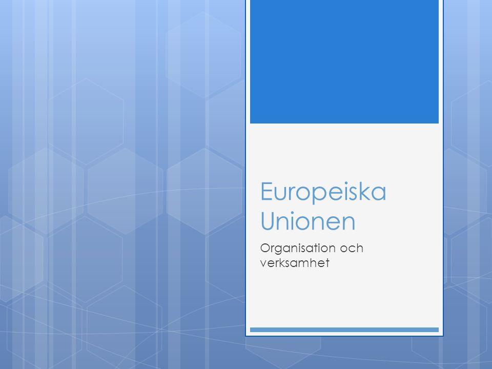 Europeiska Unionen Organisation och verksamhet