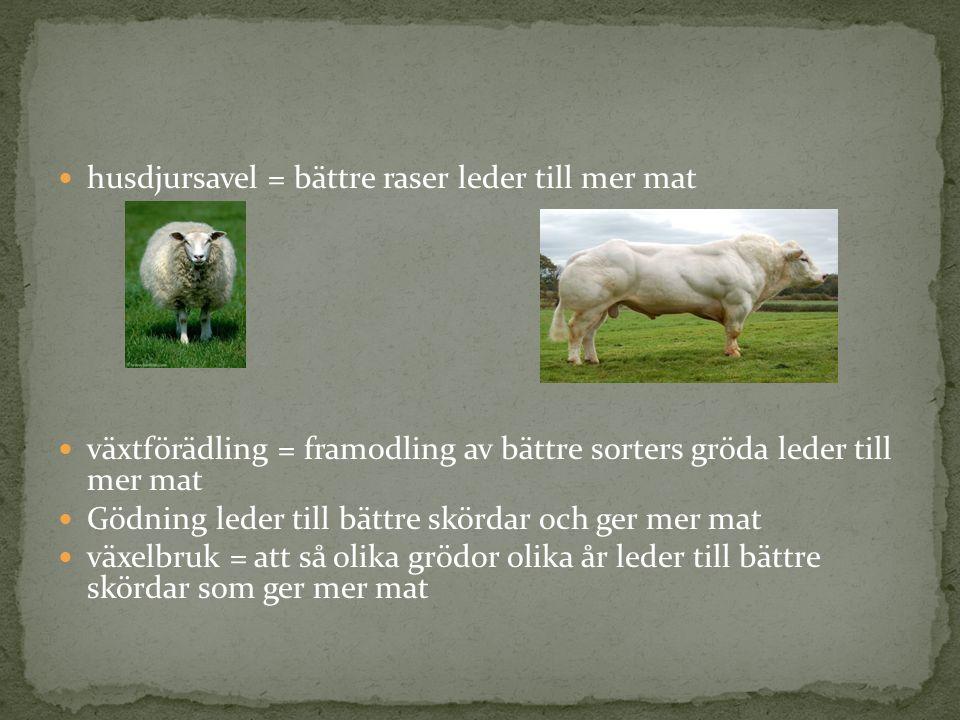 Energi: vatten, vind, arbetskraft och kol Råvaror: ull, kol, malm Kapital (investeringar): kom från t.ex.