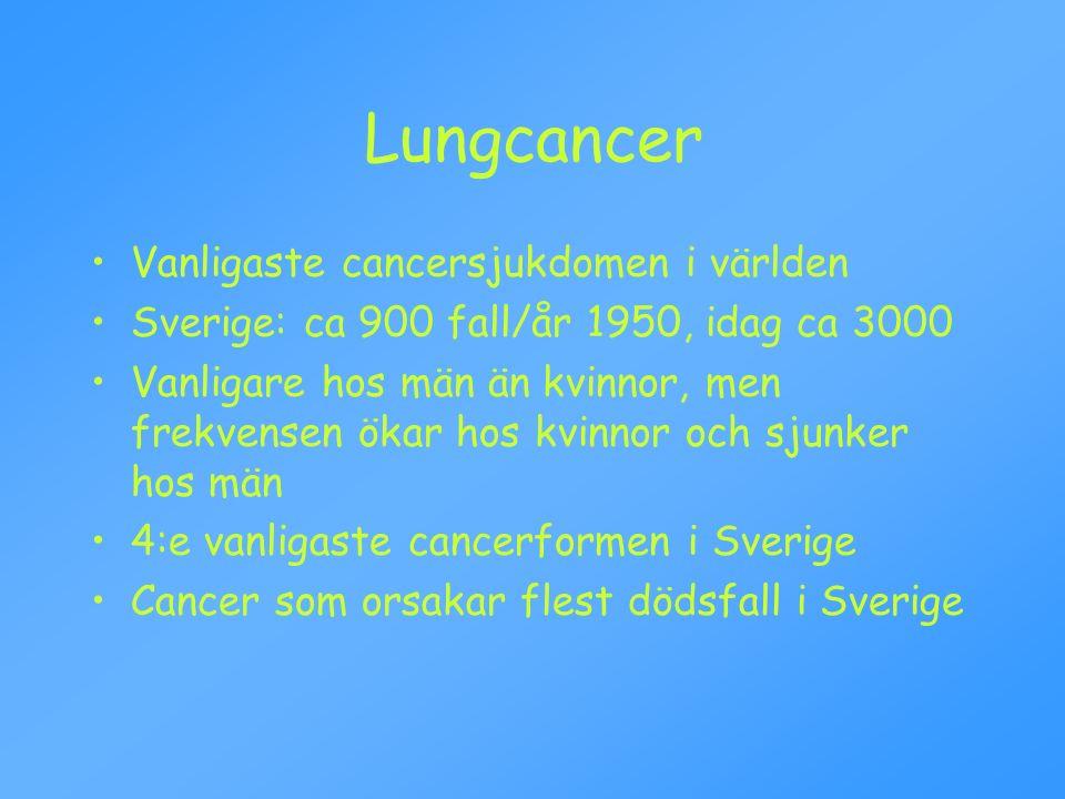 Lungcancer Vanligaste cancersjukdomen i världen Sverige: ca 900 fall/år 1950, idag ca 3000 Vanligare hos män än kvinnor, men frekvensen ökar hos kvinnor och sjunker hos män 4:e vanligaste cancerformen i Sverige Cancer som orsakar flest dödsfall i Sverige