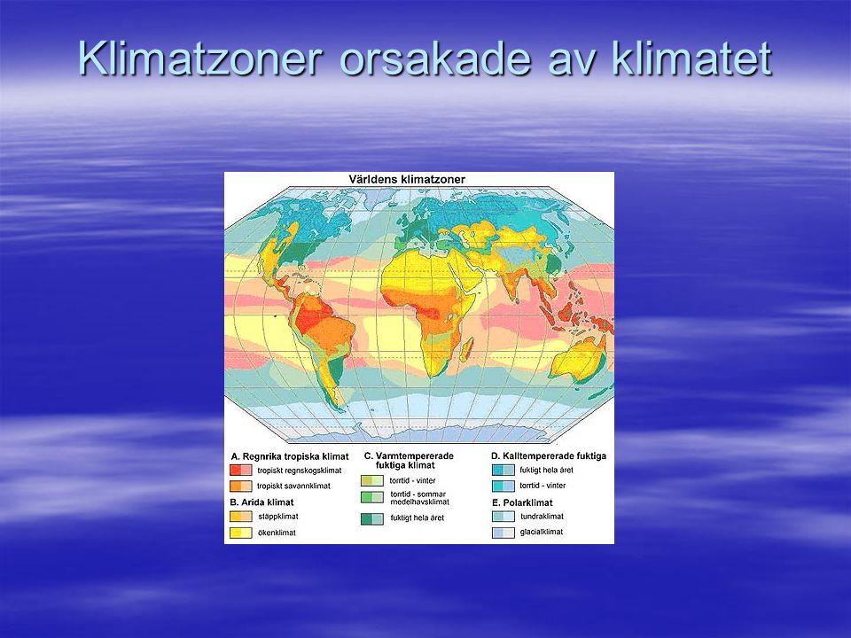 Klimatzoner orsakade av klimatet
