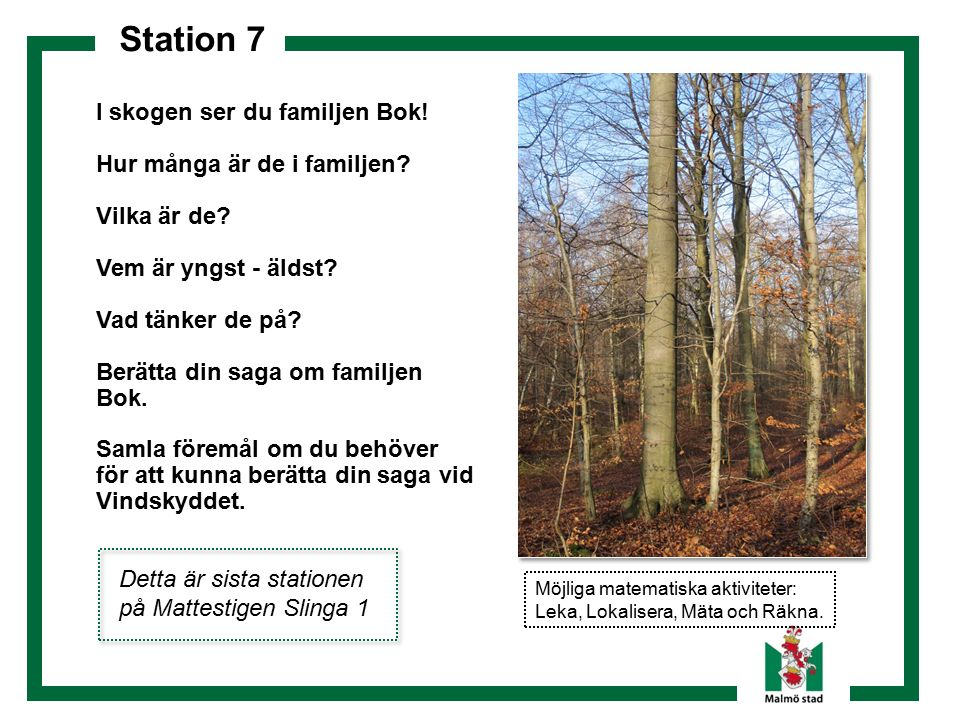 Station 7 I skogen ser du familjen Bok! Hur många är de i familjen? Vilka är de? Vem är yngst - äldst? Vad tänker de på? Berätta din saga om familjen