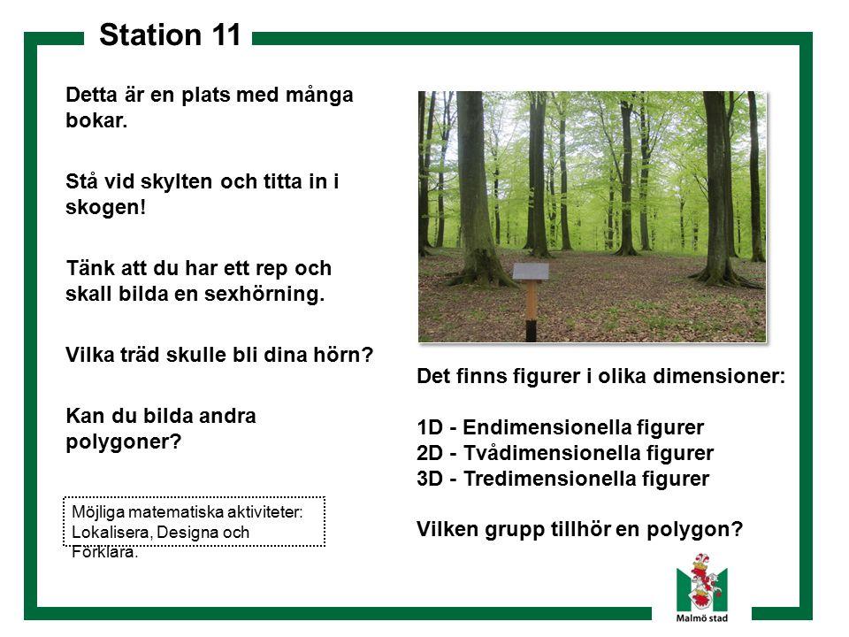 Station 11 Detta är en plats med många bokar. Stå vid skylten och titta in i skogen! Tänk att du har ett rep och skall bilda en sexhörning. Vilka träd