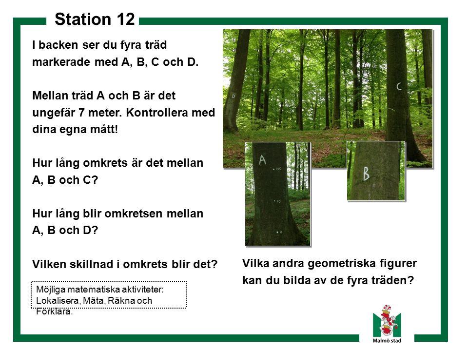 Station 12 I backen ser du fyra träd markerade med A, B, C och D. Mellan träd A och B är det ungefär 7 meter. Kontrollera med dina egna mått! Hur lång