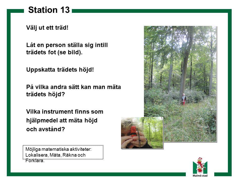 Station 13 Dokumentera! Välj ut ett träd! Låt en person ställa sig intill trädets fot (se bild). Uppskatta trädets höjd! På vilka andra sätt kan man m