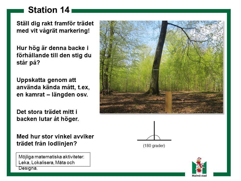 Station 14 Dokumentera! Ställ dig rakt framför trädet med vit vågrät markering! Hur hög är denna backe i förhållande till den stig du står på? Uppskat
