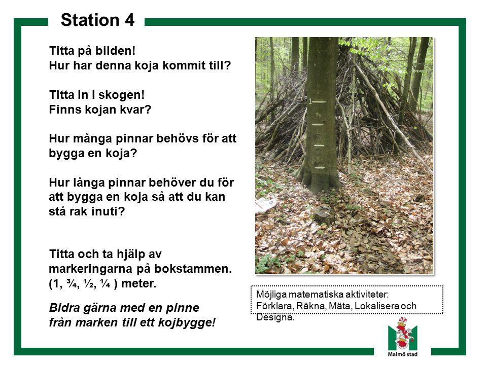 Station 4 Titta på bilden! Hur har denna koja kommit till? Titta in i skogen! Finns kojan kvar? Hur många pinnar behövs för att bygga en koja? Hur lån