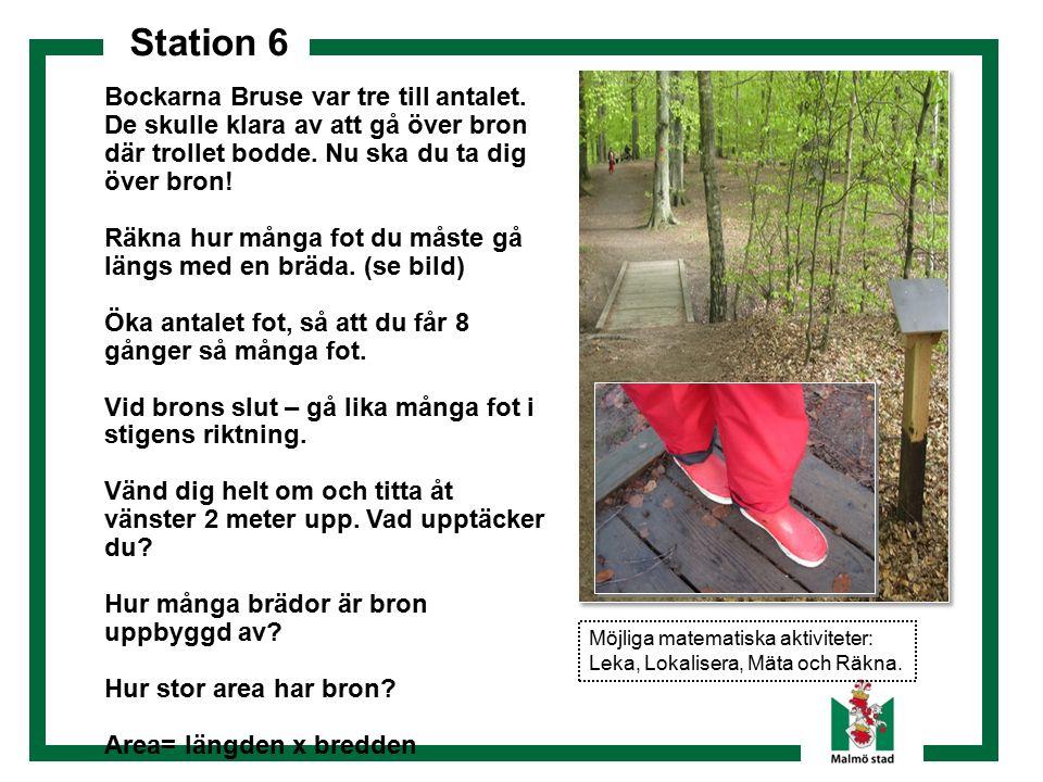 Station 6 Bockarna Bruse var tre till antalet.