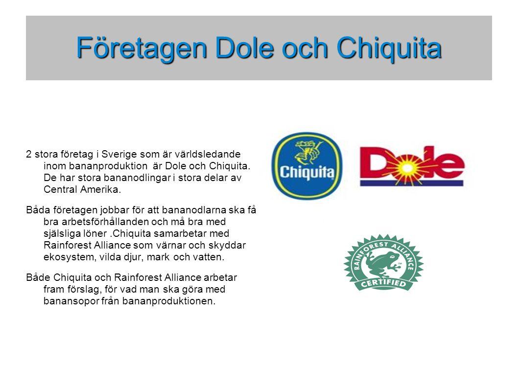 Företagen Dole och Chiquita 2 stora företag i Sverige som är världsledande inom bananproduktion är Dole och Chiquita.