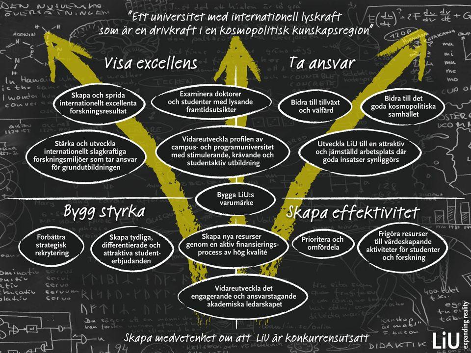 29 Laguppställningen Differentiera resurserna mellan individer och organisationer.