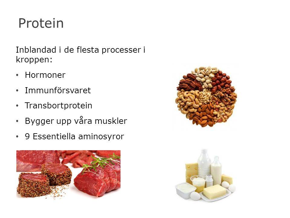 Protein Inblandad i de flesta processer i kroppen: Hormoner Immunförsvaret Transbortprotein Bygger upp våra muskler 9 Essentiella aminosyror