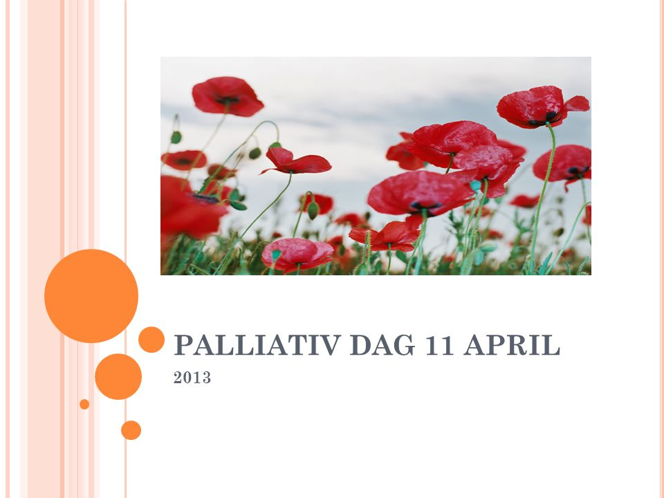 PALLIATIV DAG 11 APRIL 2013
