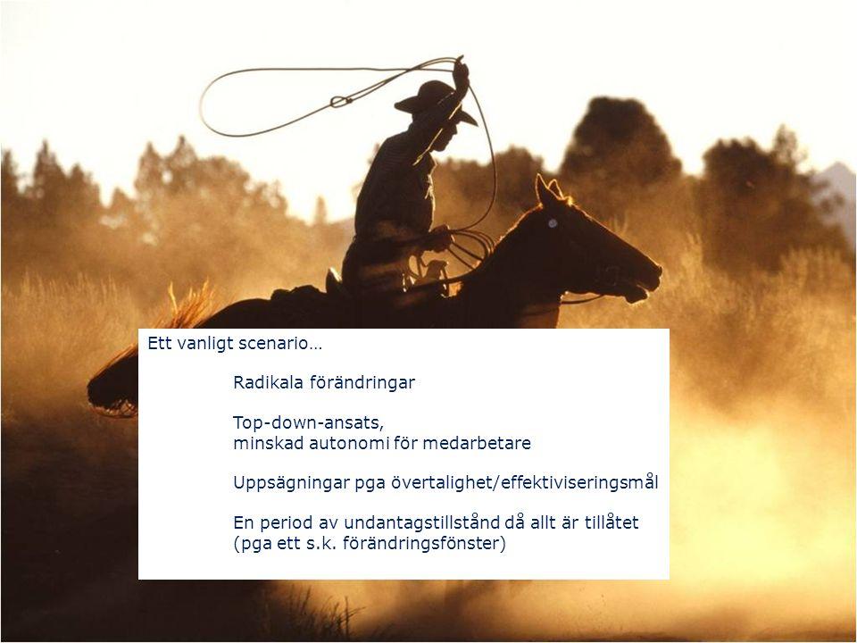 Rädsla, oro, stress, ilska (Kavanagh & Ashkansay, 2006; Cartwright & Cooper, 1996; Knippenberg & Leeuwen, xx) Fler konflikter (Schreyögg, 2006) Förlust av nyckelpersonal (Bryson, 2003; Hambrick & Cannella, 1993) Bristande förtroende (Stahl, Larsson, Kremershof, Sitkin, 2011) Ohälsa, självmord (Väänänen, Ahola, Koskinen, Pahkin & Kouvonen, 2011) Rädsla, oro, stress, ilska (Kavanagh & Ashkansay, 2006; Cartwright & Cooper, 1996; Knippenberg & Leeuwen, xx) Fler konflikter (Schreyögg, 2006) Förlust av nyckelpersonal (Bryson, 2003; Hambrick & Cannella, 1993) Bristande förtroende (Stahl, Larsson, Kremershof, Sitkin, 2011) Ohälsa, självmord (Väänänen, Ahola, Koskinen, Pahkin & Kouvonen, 2011)