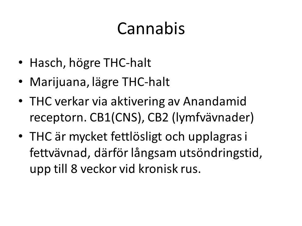 Cannabis Hasch, högre THC-halt Marijuana, lägre THC-halt THC verkar via aktivering av Anandamid receptorn.