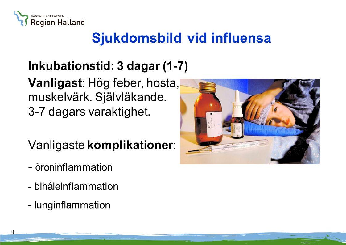 14 Sjukdomsbild vid influensa Inkubationstid: 3 dagar (1-7) Vanligast: Hög feber, hosta, muskelvärk. Självläkande. 3-7 dagars varaktighet. Vanligaste