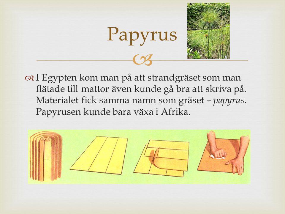   I Egypten kom man på att strandgräset som man flätade till mattor även kunde gå bra att skriva på. Materialet fick samma namn som gräset – papyrus